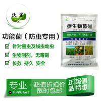 沃宝复合菌防虫专用微生物菌绿色防治