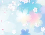 福建泉州厂家直销 新款水刺印花无纺布